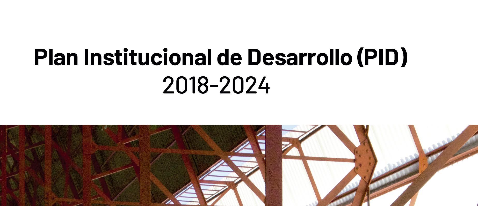 PLAN INSTITUCIONAL DE DESARROLLO